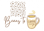 Beans To Coffee